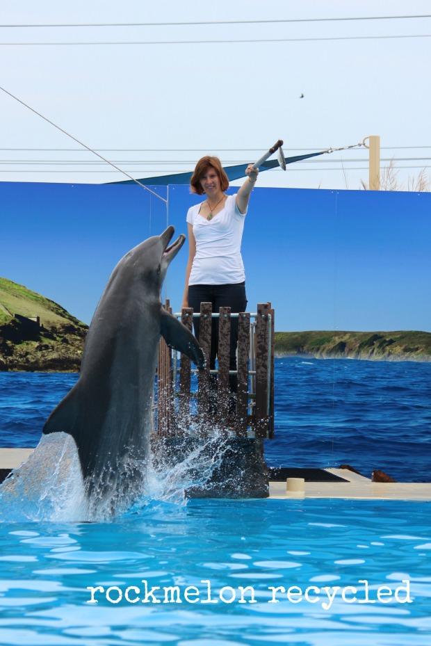 Dolphin Marine Magic Coffs 4