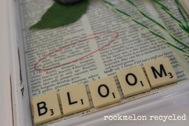 rockmelon recycled bloom