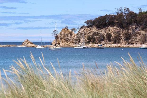Tassie Blackmans Bay 2016_9450